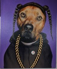 Takkoda Pets Rock Canine Rapper Anthropomorphic Canvas Wall Pop Art Furry Friend