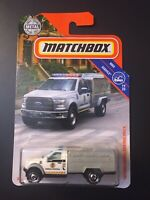 HOT 2019 MATCHBOX M CASE '10 FORD ANIMAL CONTROL TRUCK 2010 VHTF #81 NEW MODEL