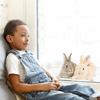 Fluffy bunnies window sticker | Easter window stickers | Easter decor