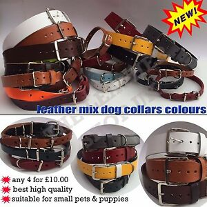 4_Assorted Sizes & Colours Leather Quality Dogs Puppies Cats Collar Brand New
