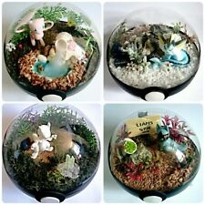 CUSTOM Pokémon / Pokéball Terrairum / Diorama Miniature Landscape