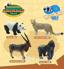 Set of 4 Endangered Animals 4D 3D Puzzle Egg Realistic Model Kit Toy