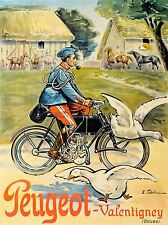 ADVERT BICYCLE GEESE FRENCH MOUSTACHE RURAL ART POSTER PRINT LV020