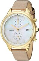 Citizen Eco-Drive Women's Chronograph Date Indicator 39mm Watch FB2002-08D