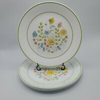 "Set of 4 Corelle Spring Meadow 10 1/4"" Dinner Plates NICE"