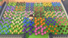 💐Animal Crossing New Horizons - 2 of EACH Hybrid (60 Flowers) Rare Flowers! 💐