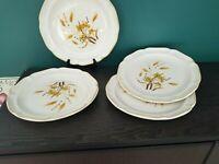 Sangostone AUTUMN WHEAT Sango Stoneware #2390-Set of 4 10 7/8 In Dinner Plates
