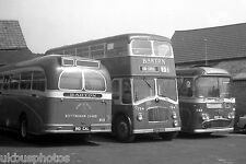 Barton Buses 810 794 868 Stamford Depot 1973 Bus Photo