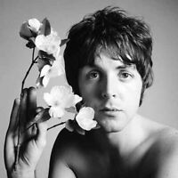 Paul McCartney, Richard Avedon rare 12 x 12 photo poster from negative, Beatles