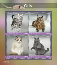 More details for liberia cats stamps 2020 mnh american shorthair maine coon ragdoll cat 4v m/s
