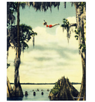 Vintage Photo Woman Diving at Cypress Gardens, Esther Williams Old Florida Art