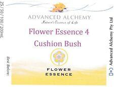 Flower Essence #4 Vitality - Advanced Alchemy 50ml Cushion Bush