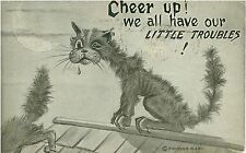 1910 Scraggley Cat Humor Postcard