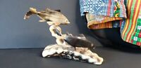 Old Asian Horn Fish Display …beautiful collection and display piece