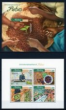 MALDIVES 2016 INTERNATIONAL YEAR OF PULSES BEANS FAO FLORA BLOCK STAMPS MNH**