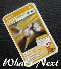 Woolworths<AUSSIE ANIMALS><Series 2 Baby Wildlife>CARD 30/36 Port Jackson Shark
