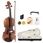 Glarry GV303 Violin Spruce Top 4/4 Ebony Fittings Bright Matte Ebony Fingerboard for sale