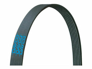 For 2011-2012 BMW X3 Multi Rib Belt Main Drive Dayco 17781JZ 3.0L 6 Cyl