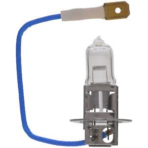 Fog Light Bulb Wagner Lighting BP1213/H3