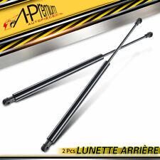 2x Vérin de Lunette Arrière pour Renault Megane Scenic 97-03 7700430022