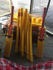 Gray Nicolls Nitro Bat Set, Stumps, 2 Balls, 2 Bats W/ Carrying Case Never Used