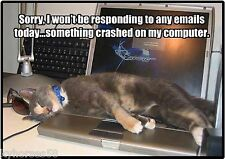 Funny Cat Humor Won't Be Responding To Emails Refrigerator Magnet