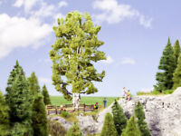 NOCH | 21641 | Spur 0,H0 | Doppelstämmige Birke, 19 cm hoch   | Modellbäume