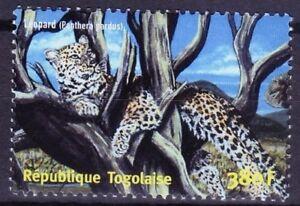 Togo 2001 MNH, Leopard, Wild Animals