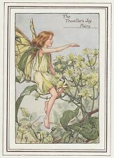 CICELY MARY BARKER c1930 TRAVELLER'S JOY FAIRY Painting Vintage Art Book Print