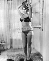 "SOPHIA LOREN IN ITALIAN FILM ""YESTERDAY, TODAY AND TOMORROW"" 8X10 PHOTO (CC426)"
