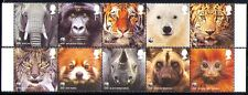 GB 2011 WWF/Bear/Tiger/Elephant/Animals/Cats 10v n30476