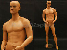 Tan skin young male mannequin Dress Form Display #Md-Ham24