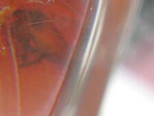 GENUINE AMBER Slab Piece Vintage Inclusion Rare Spider Insect Russian Baltic