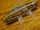 Nice Rare Vintage ~ CATTARAUGUS CUTLERY CO. 21479 ~ 2 Blade  Pocket Knife