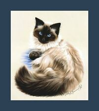 Ragdoll Cat Faithful Print by I Garmashova
