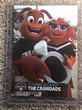 Hickory Crawdads Mascot 2018 Mascot Card Conrad The Crawdad From Team Card Set