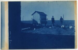 CHICKEN COOP antique picture postcard real cyanotype rppc photo c1910