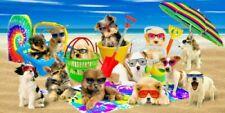 "Cool Dogs Velour Beach Towel.  Fun, Multi-color Design. 100% Cotton 30""X 60"""