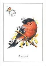 FDC 2295 - Oiseau Buzin sur gravure format A4 !