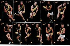 2020 Select Footy Stars Prestige Richmond team set (11)