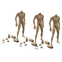 "3Pcs 1/6 Scale Male Body Narrow Shoulder für 1/6 Scale Head Sculpt 12 ""Figuren"
