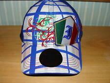 Team Italy 2010 World Cup Soccer Hat Cap OSFM New Era
