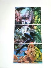 1995 LADY DEATH SERIES 2 CLEARCHROME INSERT TRYPTIC 3 CARD SET CLEAR CHROME!