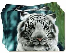 Siberian White Tiger Picture Placemats in Gift Box, AT-13P