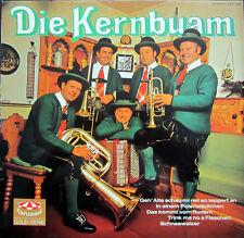 LP / DIE KERN BUAM / JAHR 1970 / GOLD-SERIE  / RARITÄT / AUSTRIA /