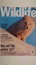 BBC WILDLIFE MAGAZINE, OCT 1995 feat PIGEONS, STELLERS SEA EAGLE, MAYFLIES