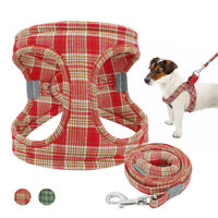 Small Dog Step in Harness & Lead Pet Soft Vest Reflective for Chihuahua Yorkie