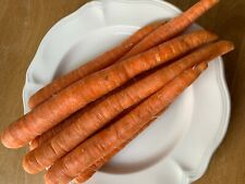 25 mix carrots seeds, Usa grown, homestead garden, delicious, easy to grow, prep