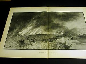 Julian Rix PRAIRIE FIRE Deer Does Stags RUNNING for COVER 1886 Large Folio Print