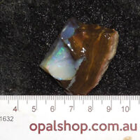 Boulder Opal Rough Material from Queensland, Australia - Ro1632